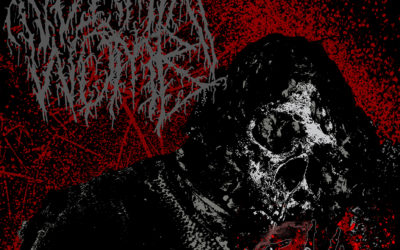 SONG OF THE WEEK:  Vermin Womb – Age of Neglect