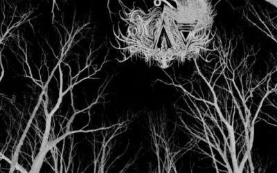 NAV – Necrotic Voices From The Æther