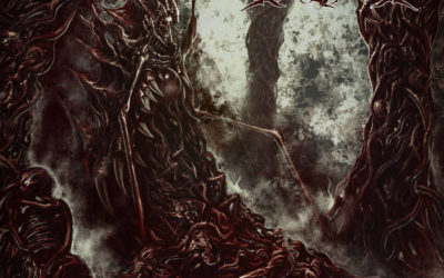 TRACK PREMIERE: Marasmus – Necrotic Overlord