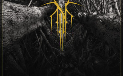EXCLUSIVE TRACK PREMIERE: Norse – Useless